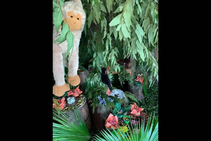 Safari com Dinossauros